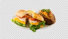 عکس برش خورده ساندویچ فیله مرغ و پنیر