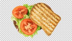 عکس برش خورده نون تست و  کاهو و گوجه