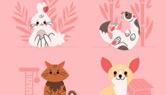 وکتور حیوانات خانگی