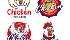 لوگو و آیکن مرغ فروشی