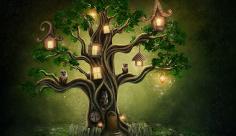 عکس خانه درختی