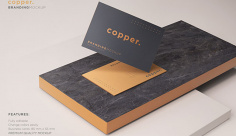 موکاپ کارت تبلیغاتی فلزی