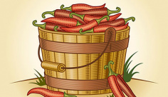 وکتور کاراکترسطل فلفل قرمز