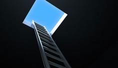 عکس نردبان به سوی آزادی