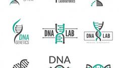 وکتور ژنتیک و دی ان ای