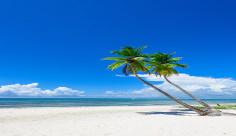 عکس ساحل
