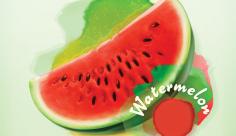 وکتور هندوانه