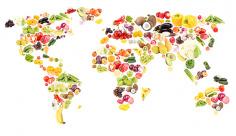 عکس نقشه جهان با میوه و سبزیجات