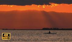 فوتیج ویدیویی قایقرانی