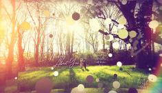 پروژه افترافکت اسلایدشو عروس، براش، ذرات
