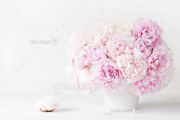 عکس دسته گل در گلدان