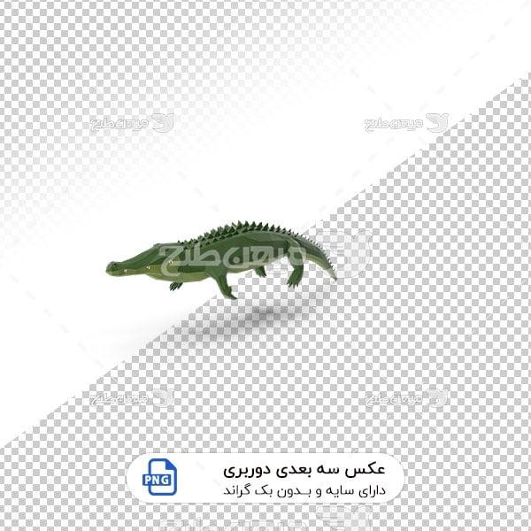 عکس برش خورده سه بعدی تمساح سبز