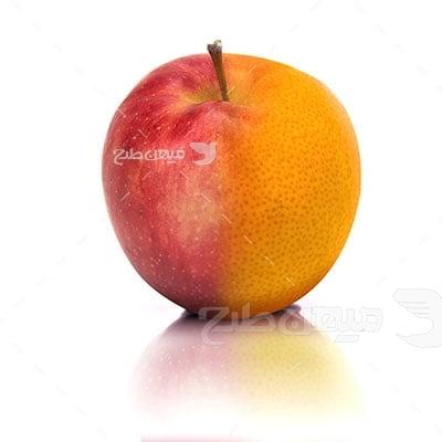 عکس تبلیغاتی غذا و ترکیب میوه
