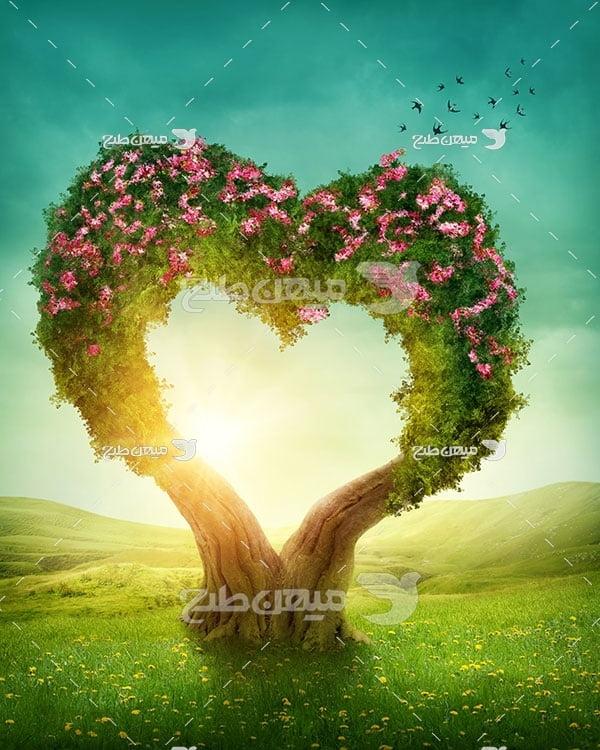 عکس درخت پر گل شکل قلب