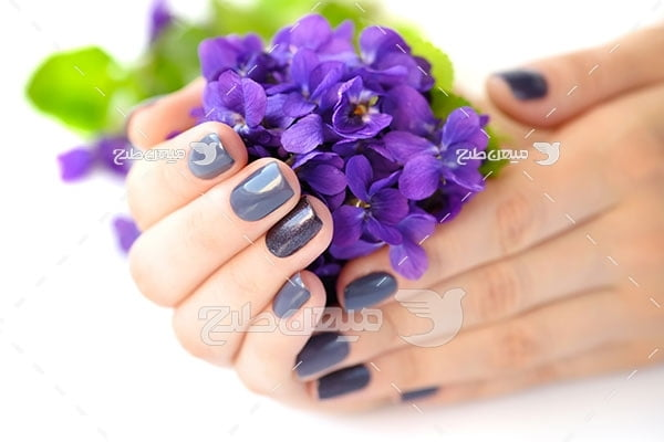 عکس لاک رنگ گل بنفشه