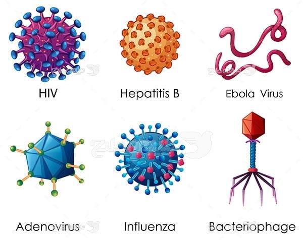وکتور انواع ویروس
