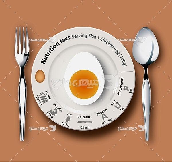 وکتور ارزش غذایی تخم مرغ پخته