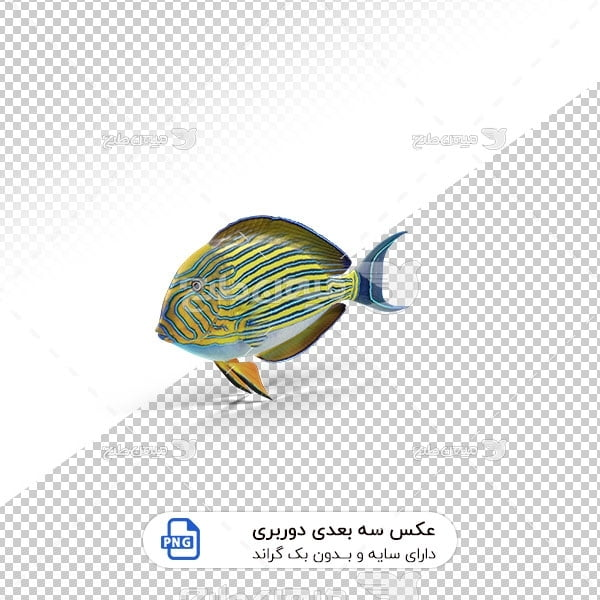 عکس برش خورده سه بعدی ماهی زیبا