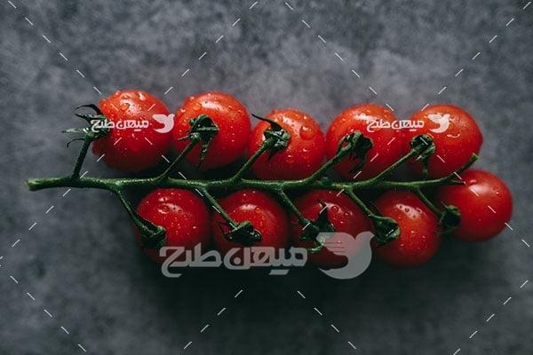 عکس گوجه فرنگی کوچک