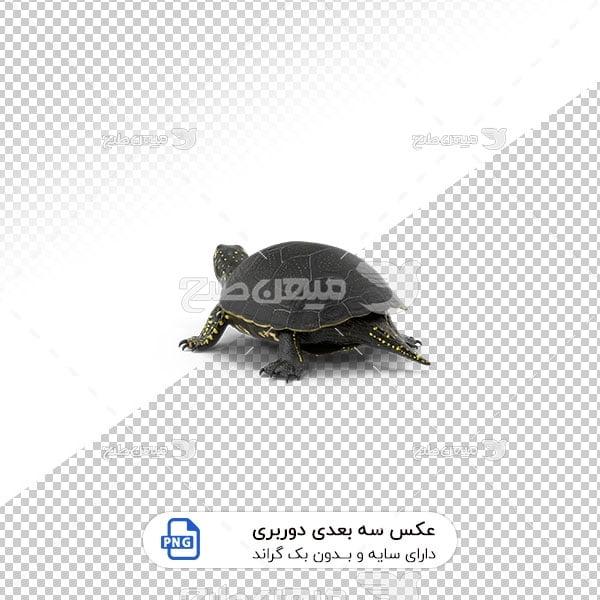 عکس برش خورده سه بعدی لاک پشت آبی