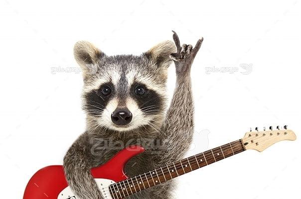 عکس تبلیغاتی موسیقی راکن و گیتار
