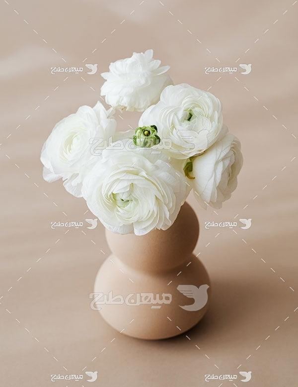 عکس گلدان گل رز سفید