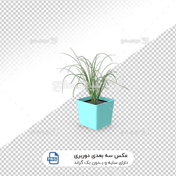 عکس برش خورده سه بعدی گل و گیاه آپارتمانی