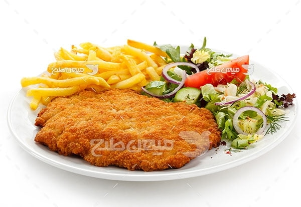 عکس تبلیغاتی غذاماهی سوخاری