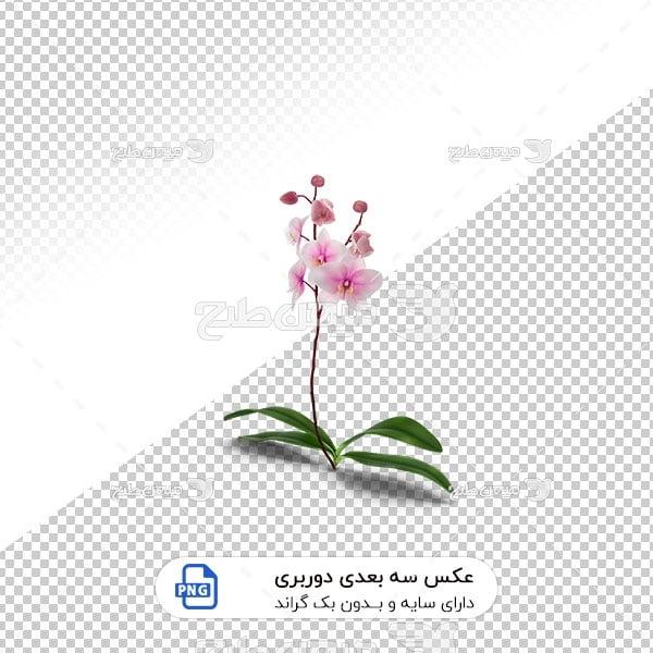 عکس برش خورده سه بعدی گل سفید و صورتی