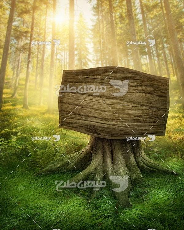 عکس شکل درخت تابلو تبلیغاتی در جنگل
