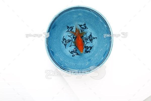 عکس کاسه ماهی قرمز