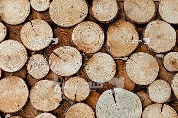 عکس چوب تنه درخت