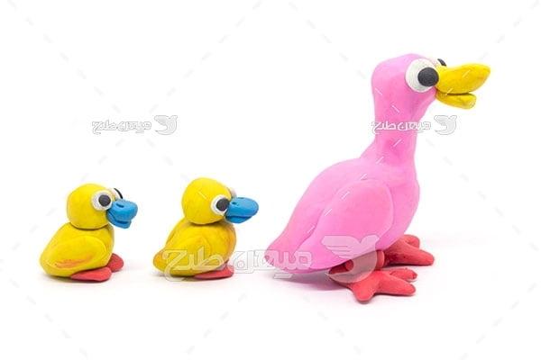 عکس اردک خمیری