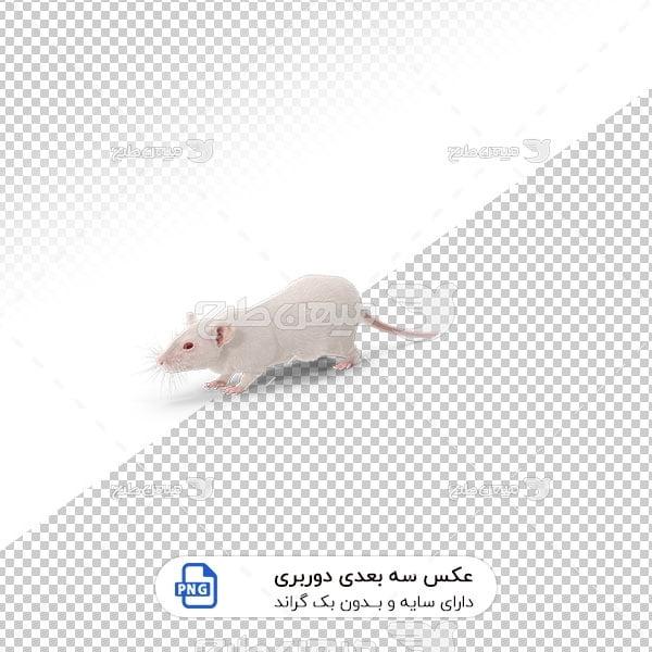 عکس برش خورده سه بعدی موش آزمایشگاهی