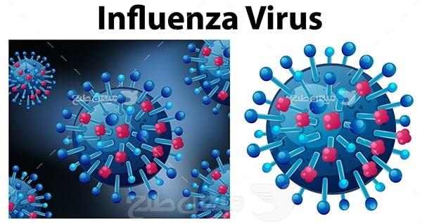 وکتور  ویروس آنفولانزا