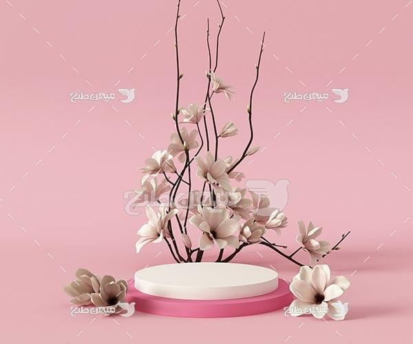عکس بک گراند مدل مینیمال گل صدفی سفید