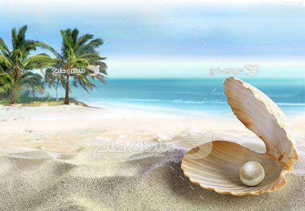 عکس منظره ساحل دریا