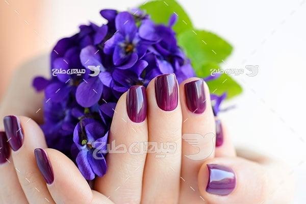 عکس لاک ناخن به رنگ گل بنفشه
