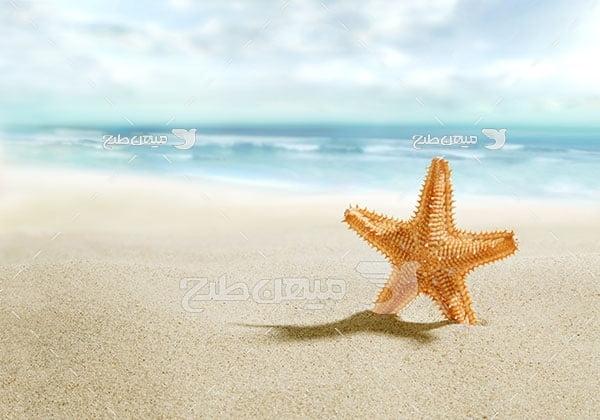 عکس ساحل شنی