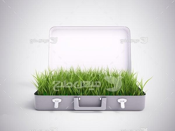 عکس چمدان طبیعت