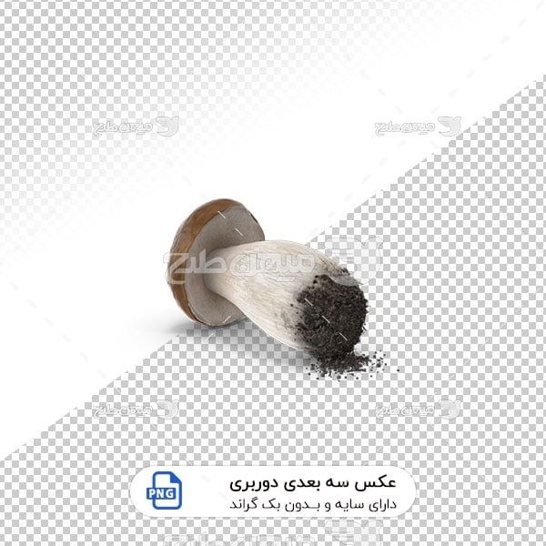 عکس برش خورده سه بعدی قارچ