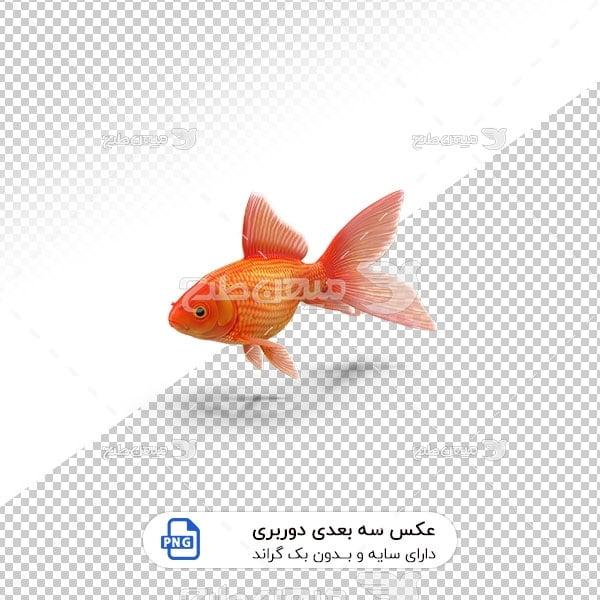عکس برش خورده سه بعدی ماهی قرمز