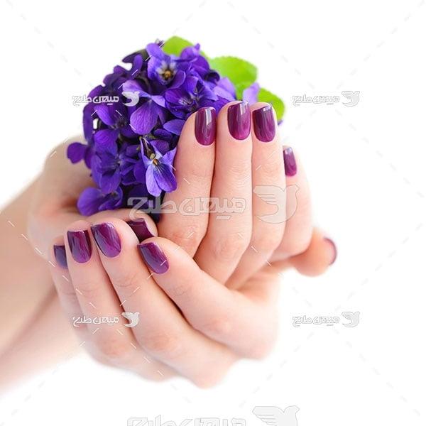 عکس گل های زیبا بنفش