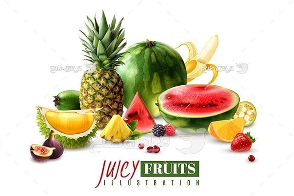 وکتور میوه های طبیعی