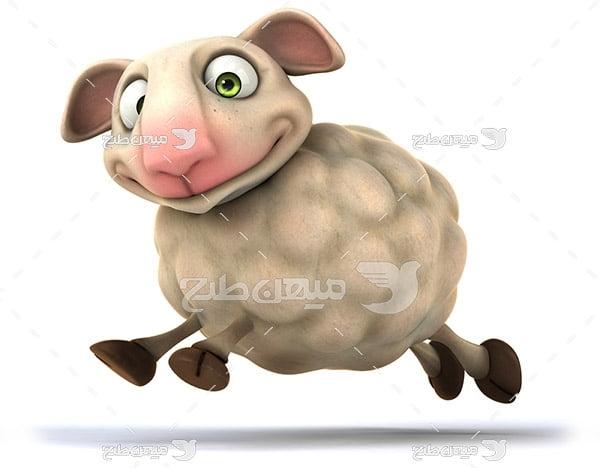 عکس حیوانات گوسفند