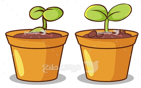 وکتور گل و گیاه