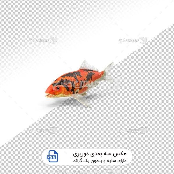 عکس برش خورده سه بعدی ماهی قرمز ژاپنی