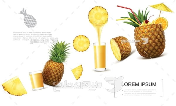 وکتور آب آناناس طبیعی