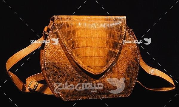 عکس تبلیغاتی مد کیف چرم زنانه قهوه ای
