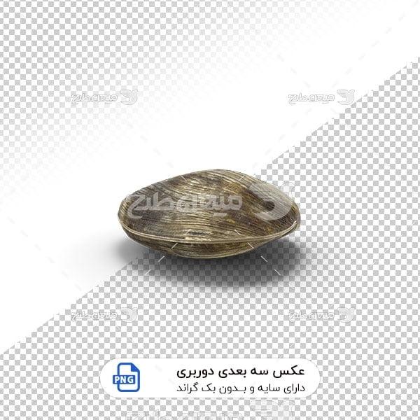 عکس برش خورده سه بعدی صدف مروارید دار